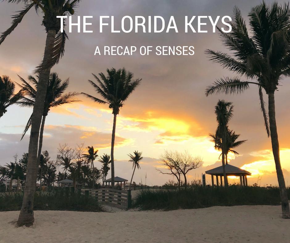 The Florida Keys: Recap of the Senses